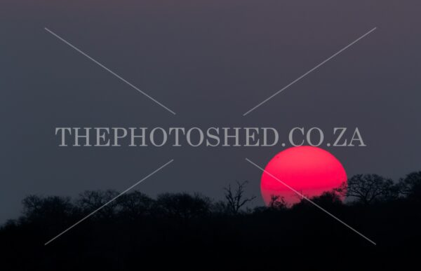Red Hot bush veld sunset