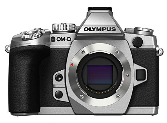 Olympus OM-D E-M1 Mark II Mirrorless Digital Camera Body (Silver)