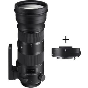 Sigma 150-600mm f/5-6.3 DG OS HSM Sport Lens and TC-1401 1.4x Teleconverter Kit